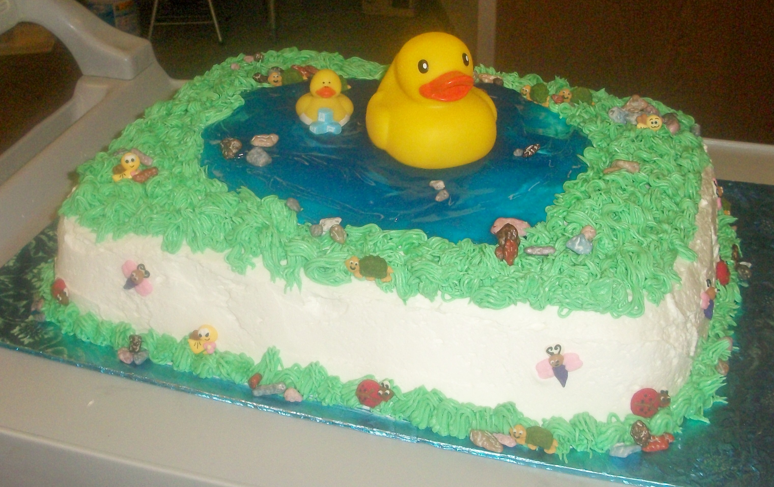 Duck With Birthday Cake